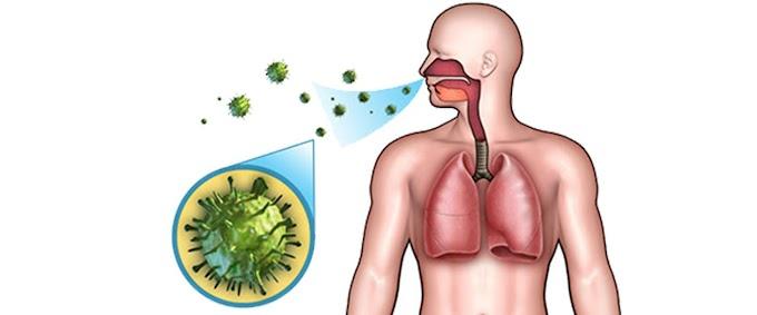 Üst Solunum Yolu Hastalıkları Ve Belirtileri
