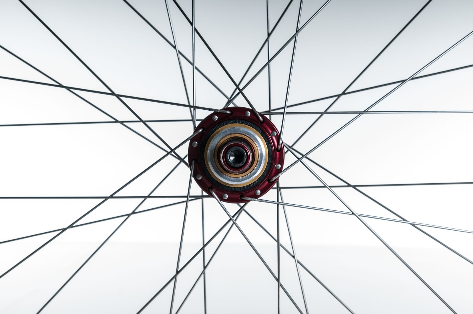 MTB: 26+ Velocity Dually Rims with Profile Racing Hubs
