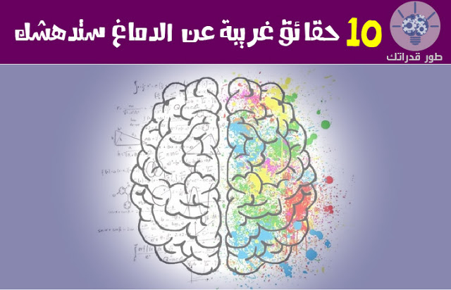9ab011e2c حقائق غريبة عن الدماغ ستدهشك