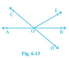 9th Class Maths – Chapter 6 Lines and Angles | Maths NCERT Solutions Class 9