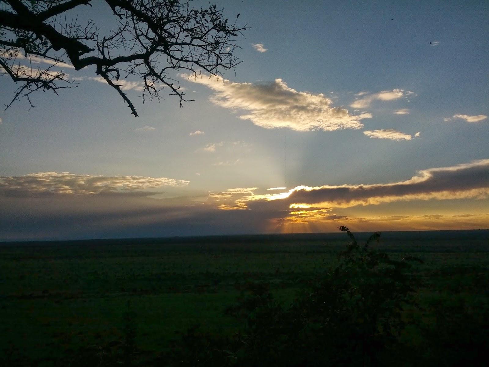 Bush Camp Diary – Dawn and Dusk