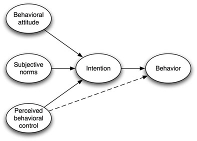 The Public Health Models: The Theory of Planned Behavior