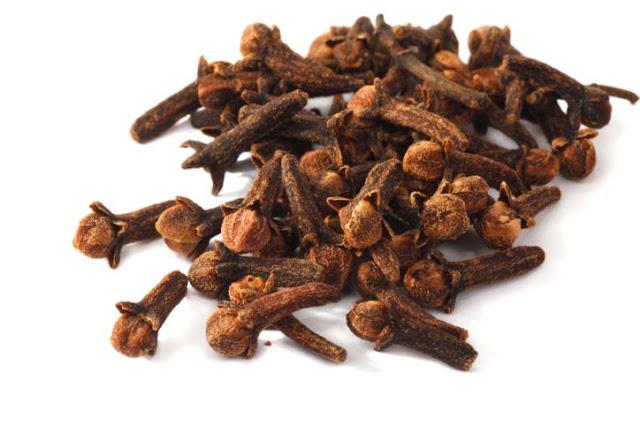 Đinh hương khô - Syzygium aromaticum - Nguyên liệu làm thuốc Chữa Cảm Sốt