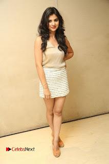 Actress Kamana Ranawat  Pictures in Short Dress at Selfie Raja Movie Success Meet  0280