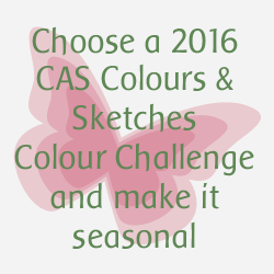 http://cascoloursandsketches.blogspot.co.uk/2016/12/challenge-202-seasonal-colours.html