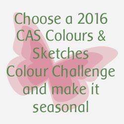 http://cascoloursandsketches.blogspot.co.uk/2016/12/challenge-202-seasonal-colours.html