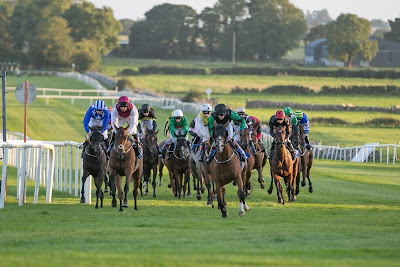Irish Racecourse: Roscommon