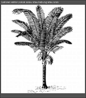 lukisan vektor sebatang pokok enau kabung aren