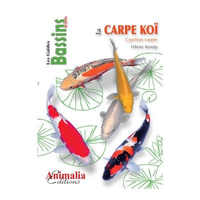 http://www.animalia-editions.com/poissons/599-la-carpe-koi.html
