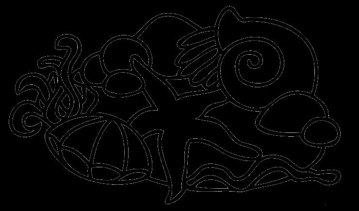 Aneka Mewarnai Gambar Hewan Bintang Laut Aneka Mewarnai Gambar