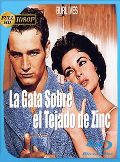La Gata Sobre El Tejado De Zinc 1958 HD [1080p] Latino [GoogleDrive] DizonHD