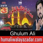 https://www.humaliwalyazadar.com/2018/09/ghulum-ali-nohay-2019.html