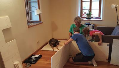 Aufstellen einer Wurfkiste für Hunde