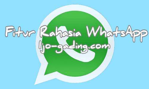 Fitur Rahasia WhatsApp