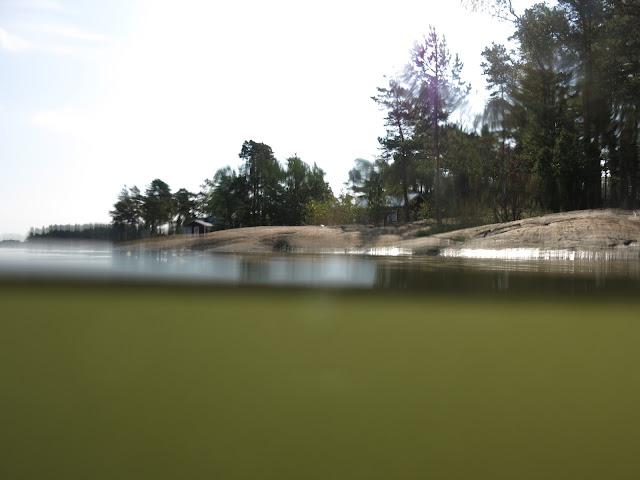 Veden pinta jakaa kuvan kahtia.