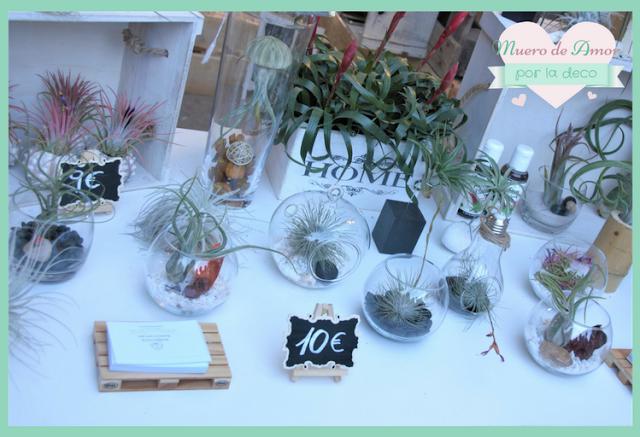 Eco Terrazas en Palo Market Fest Valencia 2017-1