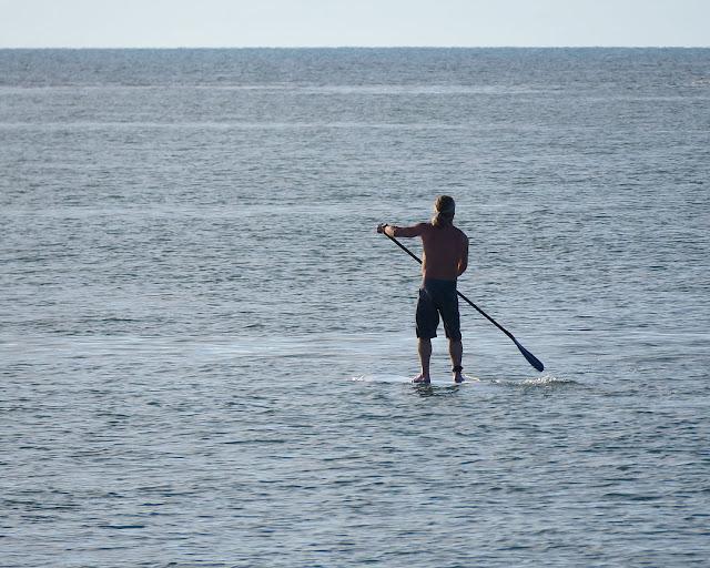 Surfista solitario, Porto Mediceo, Livorno