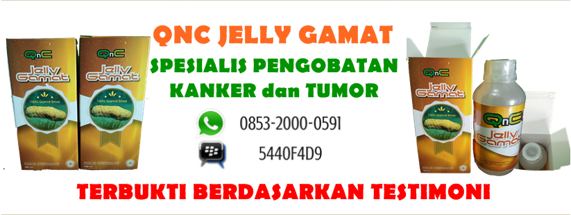 QNC Jelly Gamat Spesialis Pengobatan Kanker Dan Tumor