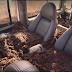 """شاهد أين تذهب السيارات التي ظهرت في """"رامز تحت الأرض"""" بعد غرقها !؟  قيمتها 10 ملايين درهم إماراتي"""
