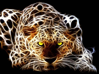 Hd Wallpapers Free Download 3d Tiger Wallpapers