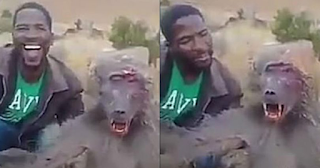 Κυνηγός κοροϊδεύει μπαμπουίνο που αιμορραγεί και ασφυκτιεί ενώ τον σηκώνει στον αέρα