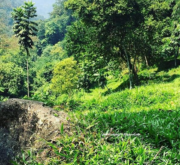 Air Terjun Curug Nangka, Air Terjun Tersembunyi Yang Memiliki Potensi Alam Yang Sangat Indah