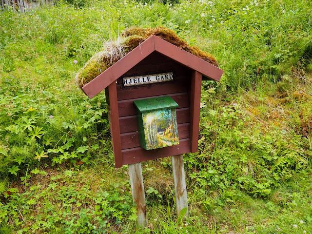 Poštovní schránka, mechy, zeleň, flora, Norsko