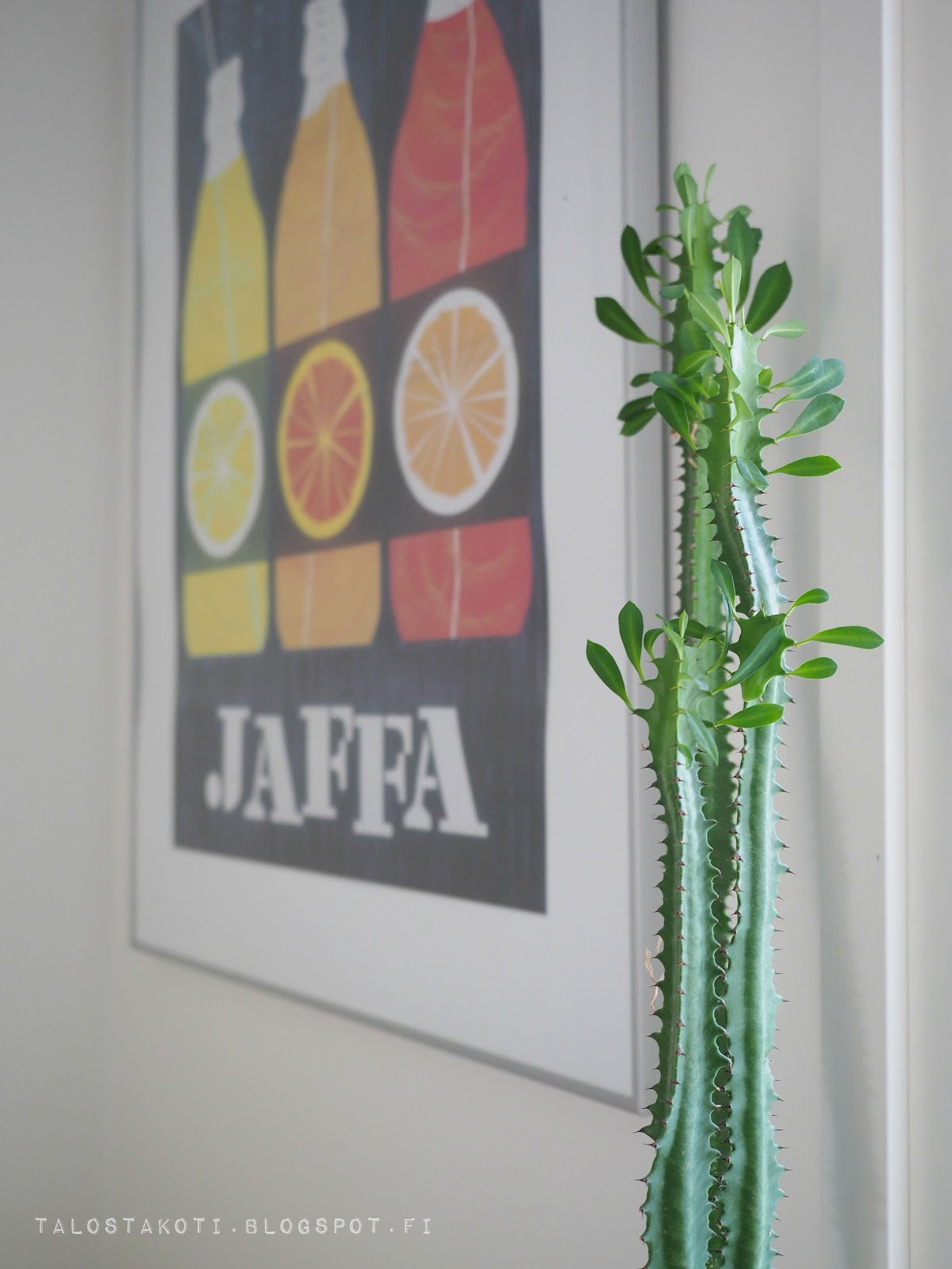 kaktus, Jaffa-juliste, Erik Bruun