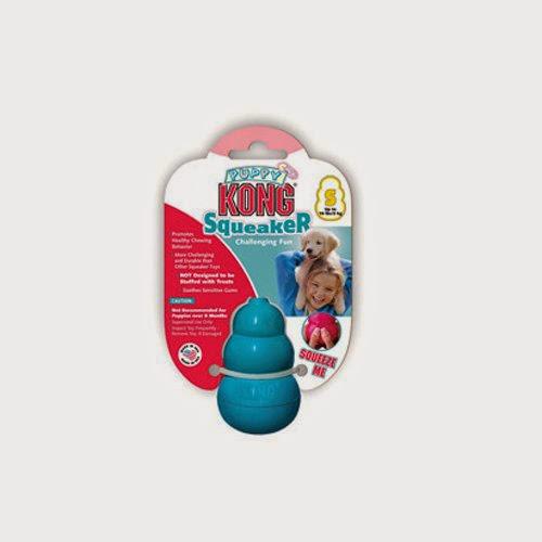 Best Kong puppy toy