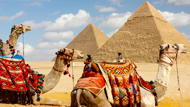 Riding Camels Giza Pyramids - Is Egypt Worth Visiting - www.tripsinegypt.com