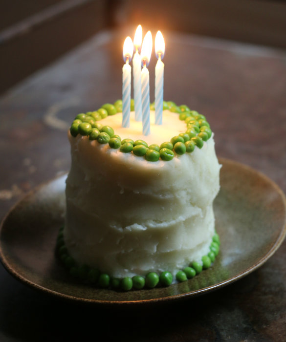 Dog Birthday Cake Recipe: Basil's 4th!