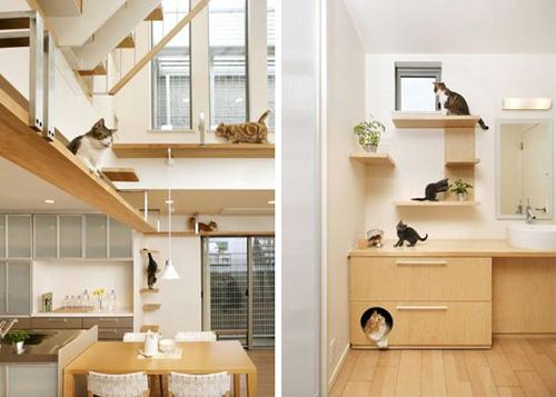 Boiserie c la casa per i gatti - Kasanova prodotti per la casa ...