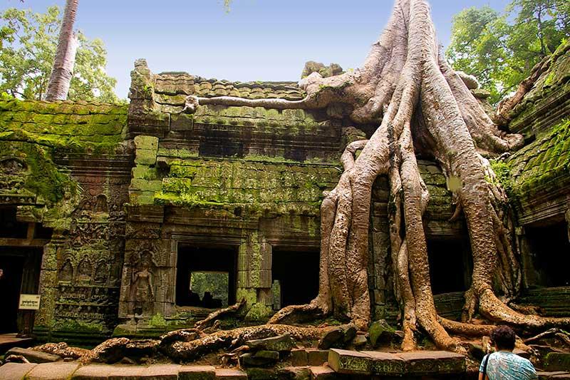 Ta-Prohm-Temples-viajes-camboya