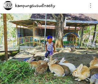 Wisata kampung Susu Dinasty