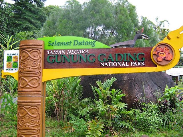 Image result for taman negara gunung gading