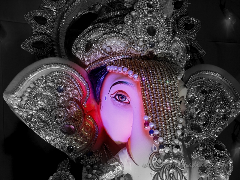 Ganesh Pandal Hopping in Mumbai - Ganpati in society