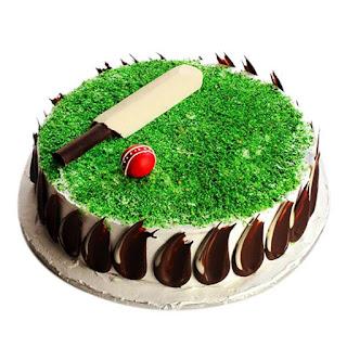 Cricket Playground