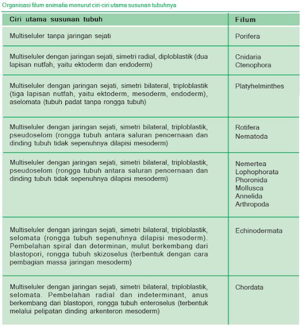Organisasi filum animalia menurut ciri-ciri utama susunan tubuhnya