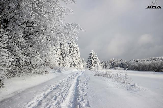 Winterwanderung im vogelsberg Skigebiet Hessen Skilift Schneebericht Schneehöhe Hoherodskopf