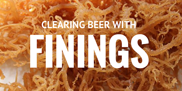 clearing beer with finings