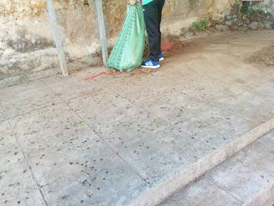 Gruppi di cittadini che si autogestiscono le pulizie della propria via