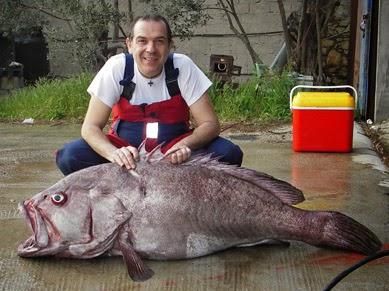 dating ιστοσελίδα πάρα πολλά ψάρια τσέχικο dating