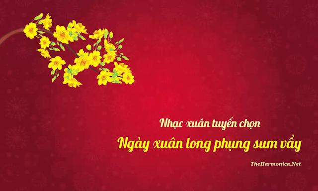 Harmonica Tabs - Ngay Xuan Long Phung Sum Vay