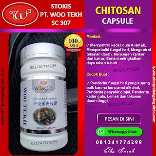 Chitosan Capsule