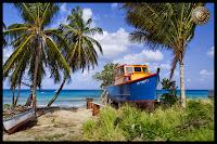 rum caribe