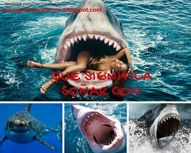 porque soñamos con tiburones