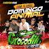 GIGANTE CROCODILO PRIME NA FLORENTINA 15 04 2018 CD ESPECIAL MARCANTES DJ PATRESE-CD AO VIVO-BAIXAR GRÁTIS