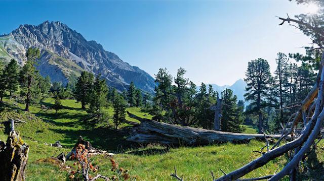 Swiss ialah negara pegunungan yang ada di Eropa Daftar Tempat Wisata Mempesona Di Swiss