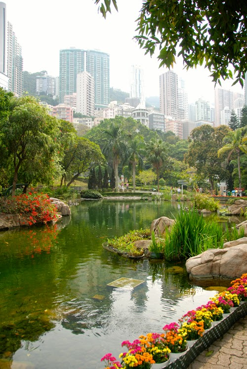Beautiful Hong Kong Park china