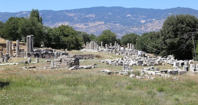 Archaeological excavations to resume at ancient site of Lagina in SW Turkey